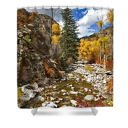 Shower Curtain featuring the photograph Grizzly Creek Cottonwoods Vertical by Jeremy Rhoades