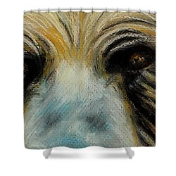Grizzly Eyes Shower Curtain