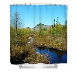 Shower Curtain featuring the photograph Groton State Forest Moose Country by Sherman Perry
