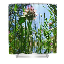 Ground Level Flora Shower Curtain by Joyce Dickens