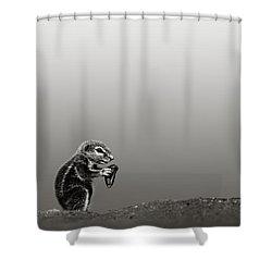 Ground Squirrel Shower Curtain by Johan Swanepoel