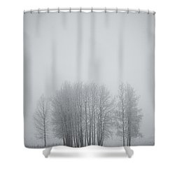 Grove Of Trees Covered In Hoar Frost On Shower Curtain by Roberta Murray