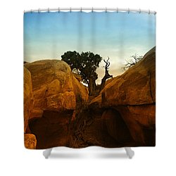 Growing Between The Rocks Shower Curtain by Jeff Swan