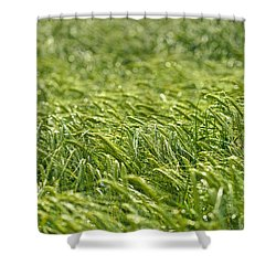 Growing Shower Curtain by Ivan Slosar