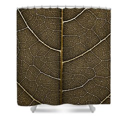 Grunge Leaf Detail Shower Curtain by Carsten Reisinger