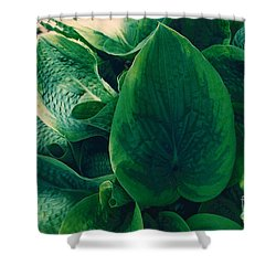 Guacamole Hosta Shower Curtain
