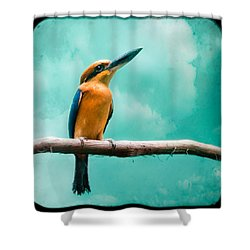 Shower Curtain featuring the photograph Guam Kingfisher - Exotic Birds by Gary Heller