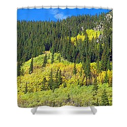 Guanella Pass Study 2 Shower Curtain