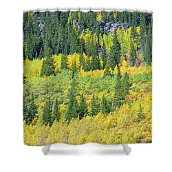 Guanella Pass Study 3 Shower Curtain
