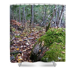 Guardian Rock Shower Curtain by Leone Lund