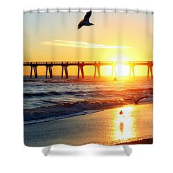 Guardians Of The Gulf Shower Curtain