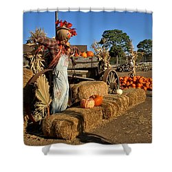Shower Curtain featuring the photograph Guarding The Pumpkin Patch by Michael Gordon