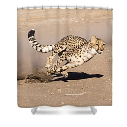 Guided Missile Shower Curtain