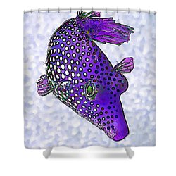 Guinea Fowl Puffer Fish In Purple Shower Curtain by ABeautifulSky Photography