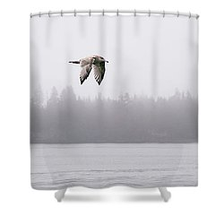 Gull In Flight Shower Curtain by Marty Saccone