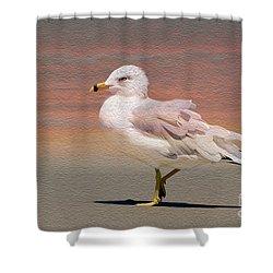 Gull Onthe Beach Shower Curtain