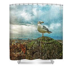 Gull Over Rome Shower Curtain by Jack Zulli