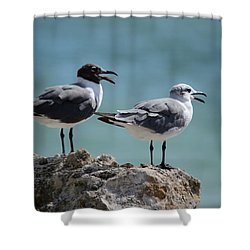 Gull Talk Shower Curtain