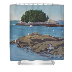 Gulls At Five Islands - Art By Bill Tomsa Shower Curtain