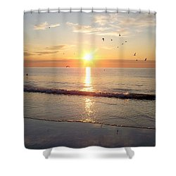 Shower Curtain featuring the photograph Gulls Dance In The Warmth Of The New Day by Eunice Miller