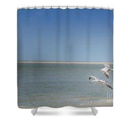 Shower Curtain featuring the photograph Gulls In Flight by Erika Weber