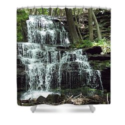 Gun Brook Falls Shower Curtain