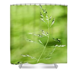 Gust Of Wind - Featured 3 Shower Curtain by Alexander Senin