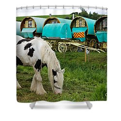 Gypsy Cob And Wagons Shower Curtain
