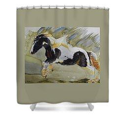 Gypsy Princess Shower Curtain by Warren Thompson