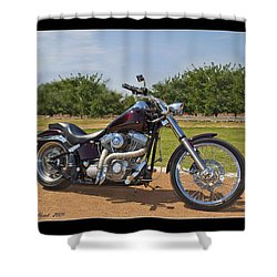 H-d_b Shower Curtain