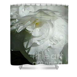Shower Curtain featuring the photograph White Begonia  by Katy Mei