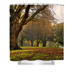 Hagley In Autumn Shower Curtain
