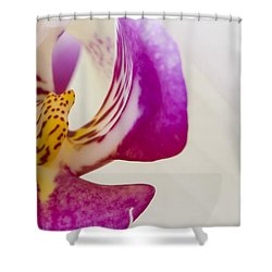 Half An Orchid Shower Curtain by Anne Gilbert