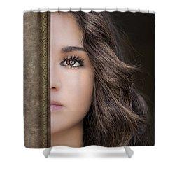 Half Remembered Dream Shower Curtain by Evelina Kremsdorf
