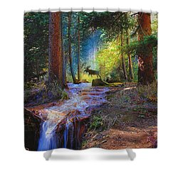 Hall Valley Moose Shower Curtain by J Griff Griffin