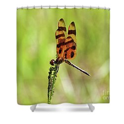 Halloween Pennant Shower Curtain