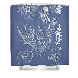 Halymenia Formosa And Eucheuma Spinosum Shower Curtain by Aged Pixel