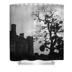 Hampton Court Tree Shower Curtain