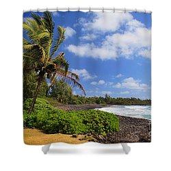 Hana Beach Shower Curtain by Inge Johnsson