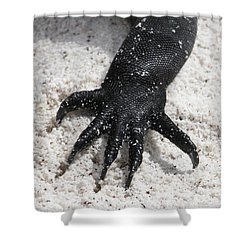 Hand Of A Marine Iguana Shower Curtain by Liz Leyden