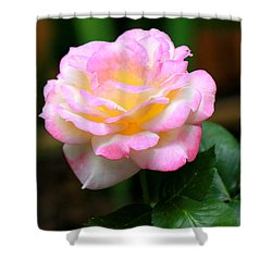 Hand Picked For You Shower Curtain by Deborah  Crew-Johnson