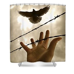 Hand Reaching Out For Bird Shower Curtain by Nathan Lau