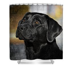Handsome Black Lab Shower Curtain by Eleanor Abramson