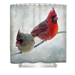Handsome Couple IIi Shower Curtain by Debbie Portwood