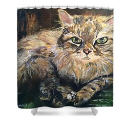 Handsome Toby Shower Curtain