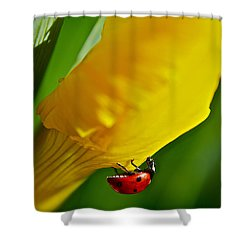 Hang On Shower Curtain by Bill Owen