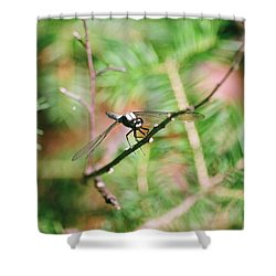 Shower Curtain featuring the photograph Hangin' Out by David Porteus