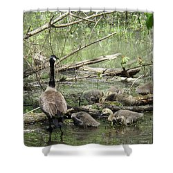 Hangin Out With Mom Shower Curtain by Sara  Raber
