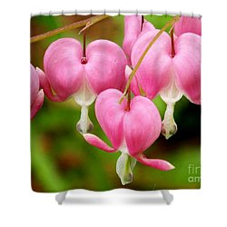Hanging Hearts In Pink And White Shower Curtain