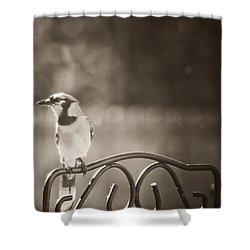 Hanging Out In The Garden Shower Curtain by Kim Henderson